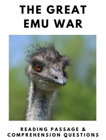 The Great Emu War: FREE Reading Passage and Comprehension Questions