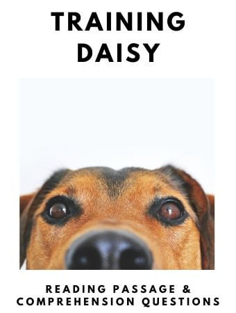 Training Daisy: FREE Reading Passage and Comprehension Questions